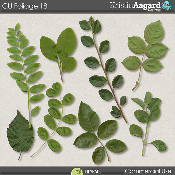 http://the-lilypad.com/store/Digital-Scrapbook-Tools-CU-Foliage-18.html