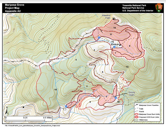 Yosemite Fire Report Mariposa Grove Prescribed Fire and Lakes Fire