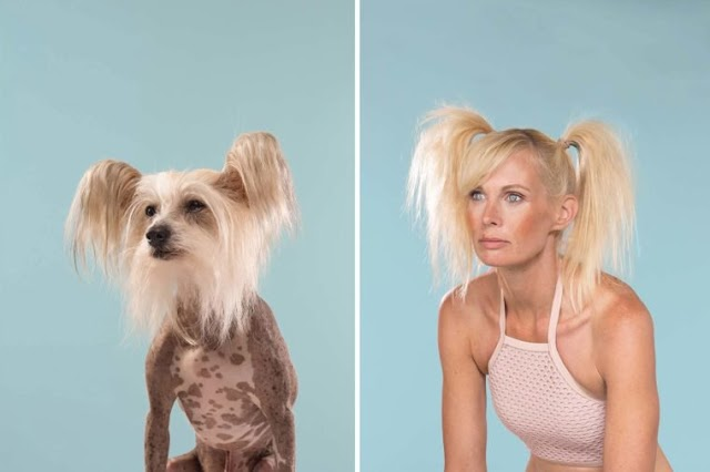 10 Pets That Look Just Like Their Owners(hilarious pics)