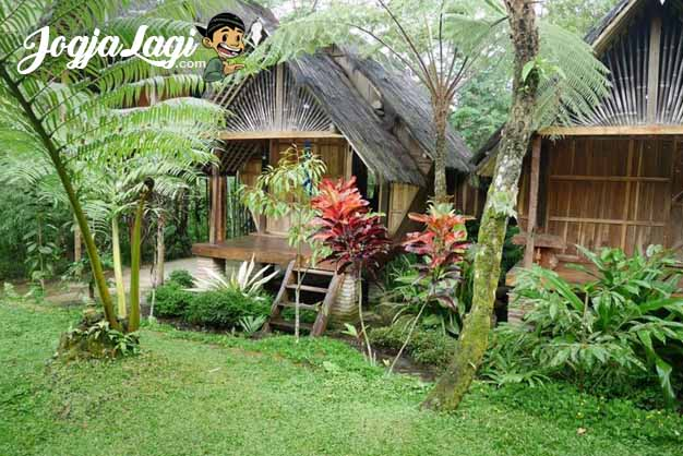 Homestay Desa wisata Nglinggo Kulonprogo