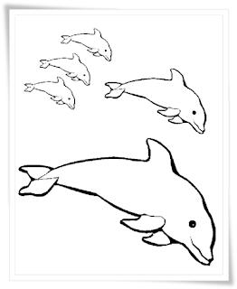 ausmalbilder zum ausdrucken: ausmalbilder delfine kostenlos