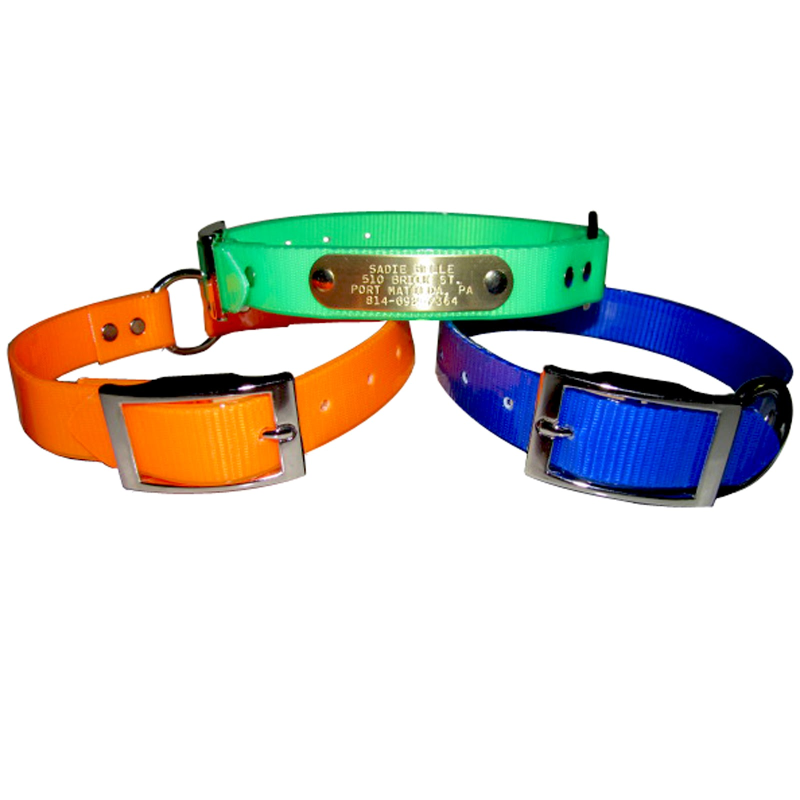 Paw In Hand Pet Services No Stink Dog Collars Perfect For