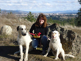 For the Love Of Irish Wolfhounds: Walking Riagan & XXXL ...