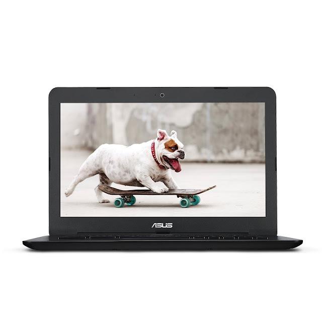 ASUS Chromebook C300SA-DH02