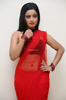 Aasma Syed in Red Saree Sleeveless Black Choli Spicy Pics ~  Exclusive Celebrities Galleries 084.jpg