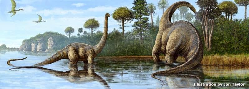 Paleontologia En Colombia Una Nueva Especie De Dinosaurio Sauropodo Es Descrita En Villa De Leyva Lote de 10.500 m2 con 3 cabañas en construcción rústica, con. paleontologia en colombia blogger