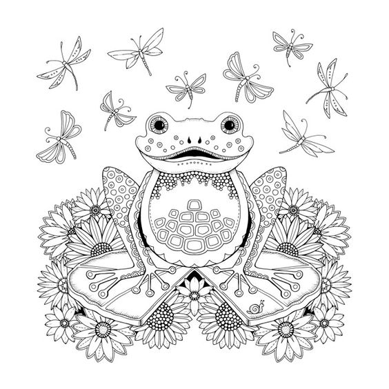 Johanna Basford Coloring Pages Magical Jungle | Libro de colores ... | 564x564