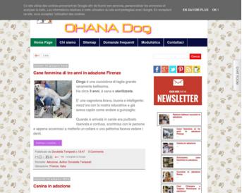 blog cani gatti volontariato web design