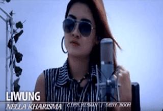 Lirik Lagu Liwung (Dan Artinya) - Nella Kharisma