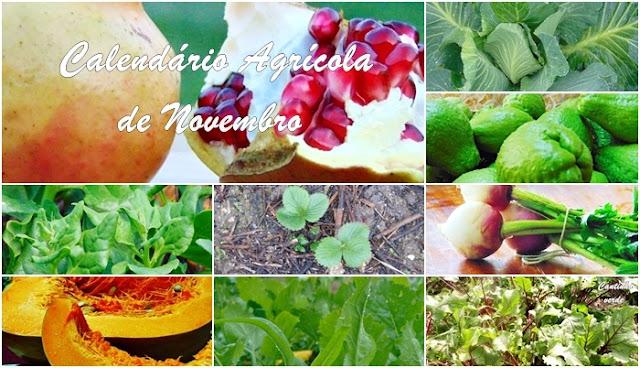 Calendário Agricola de Novembro