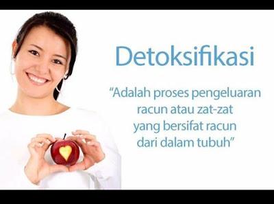 detox shaklee 0124698356