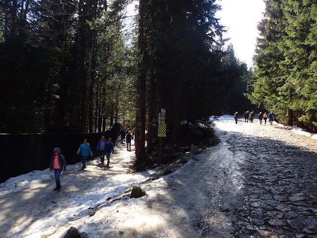 Szlaki na Kalatówki