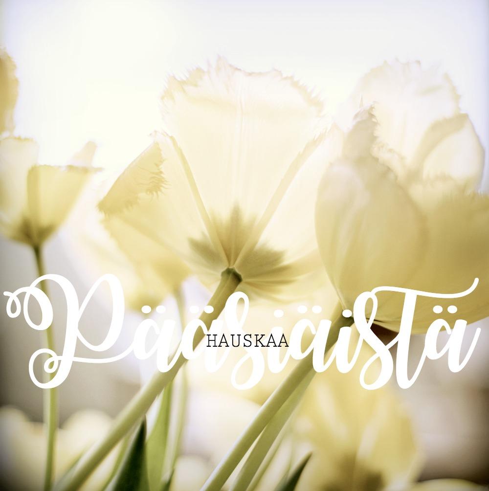 Pääsiäinen, yellow, keltainen, tulppaanit, kukat, koti, valokuvaus, valokuvaaminen, Visualaddict, Turku, arkkitehtuuri, valokuvaaja Frida Steiner, rakennukset