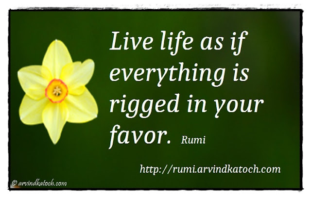 Rumi, Quote, Meaning, Positive Thinking, Life, Live, Favor, Rigged,