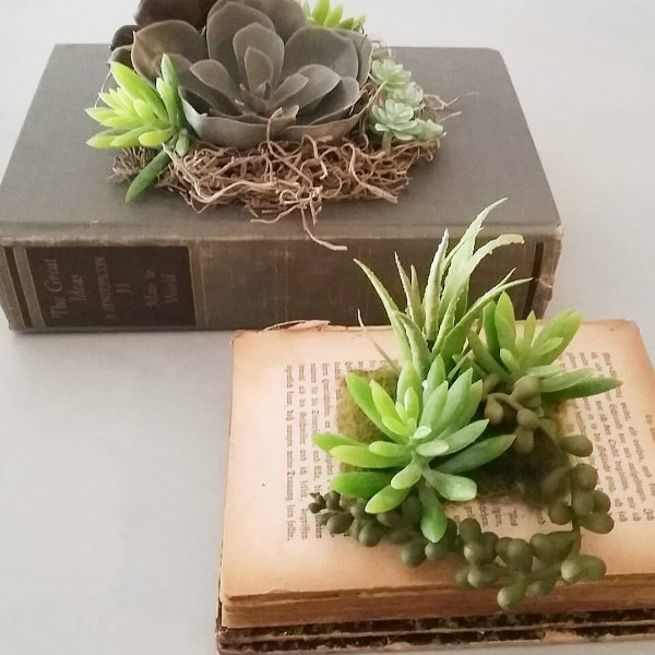 Faux Succulents Placed on Two Vintage Books