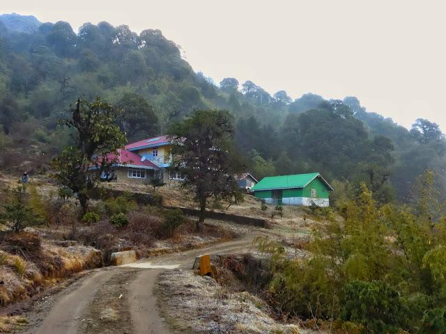Gairibans Singhalila National Park