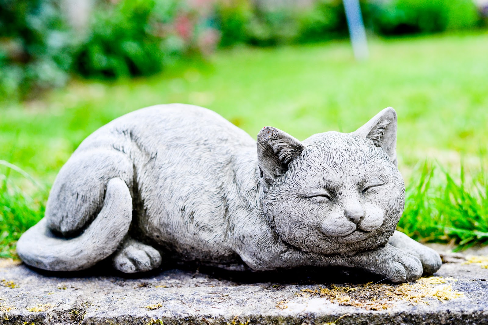 cat garden ornament, Homesense, homsense store bedford, homesense haul,