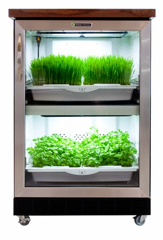 Free Standing Urban Cultivator