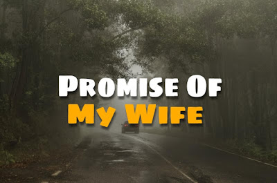 Promise Of My Wife (Scary Stories)