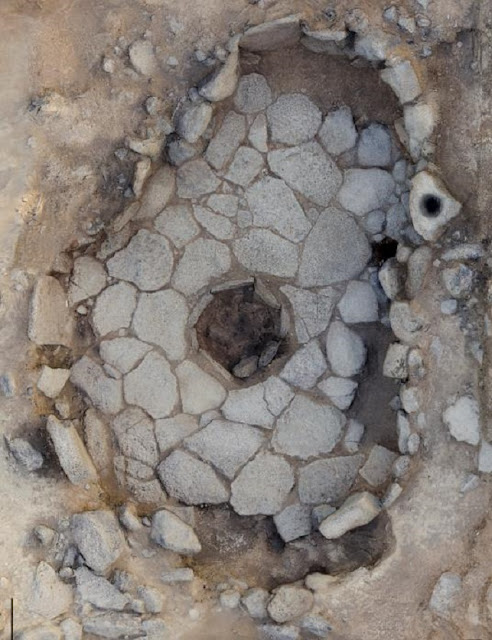 Wild sheep grazed in the Black Desert 14,500 years ago