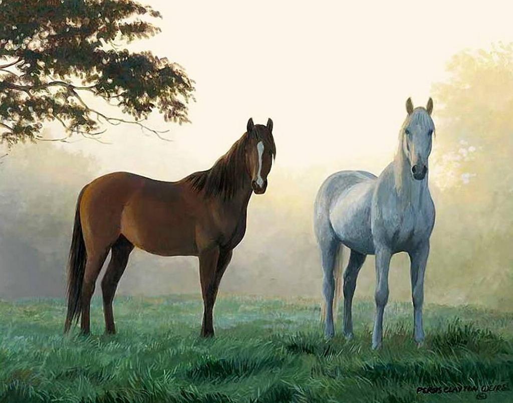 Cuadros modernos pinturas y dibujos paisajes naturales - Los cuadros mas bonitos ...