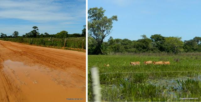 Rodovia Transpantaneira, Pantanal do Mato Grosso