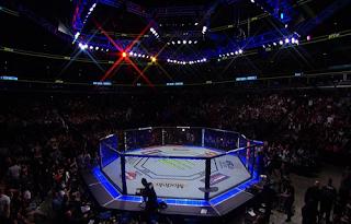 UFC MMA Biss Key 8 July 2018