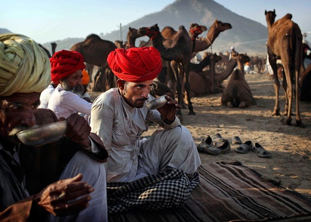 A Trader at Pushkar Fair