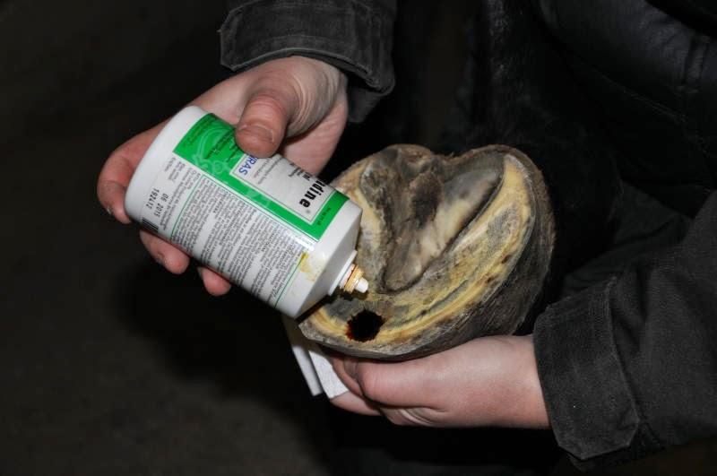 Käden Sieni-Infektio