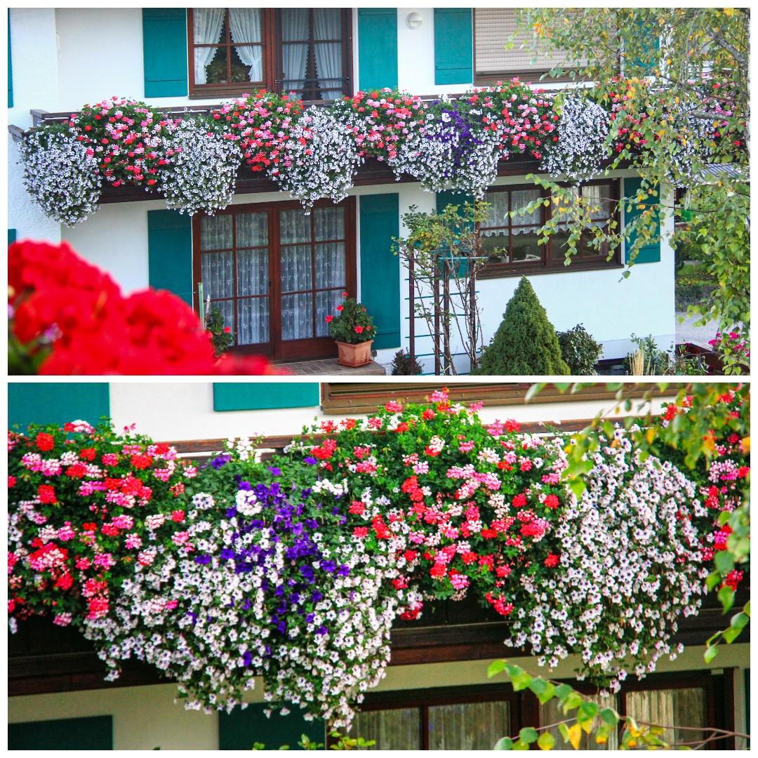 Jatuh Cinta Di Seeg - Balkoni