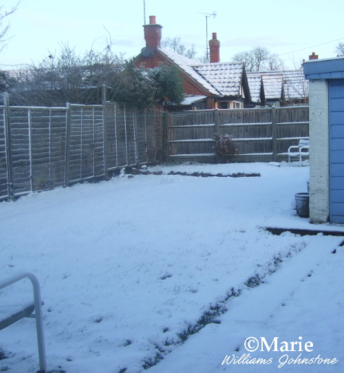 back garden with snow covering the grass