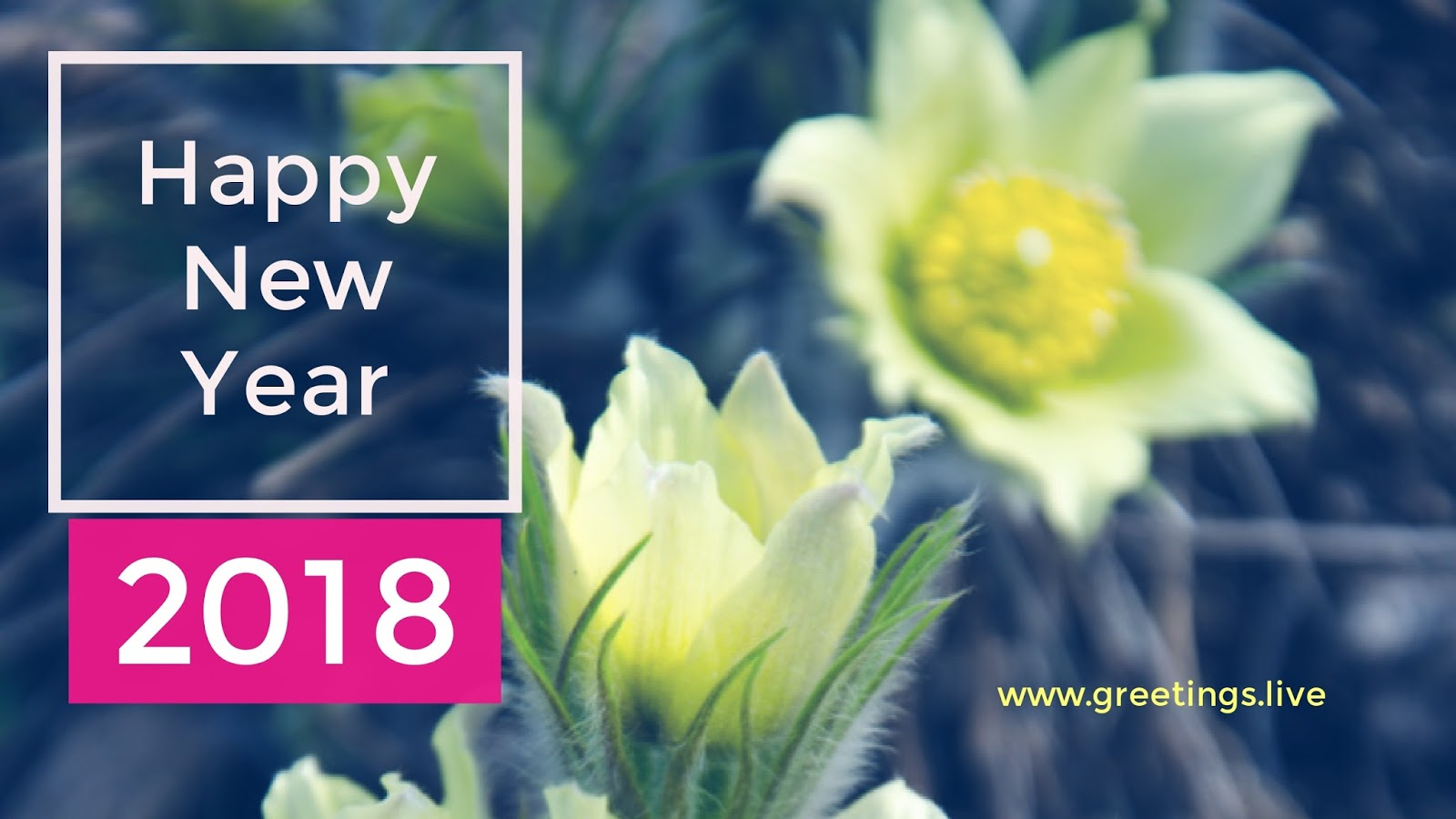 2018 New Year Wishes Greetings Top Greetings For Happy New Year 2018