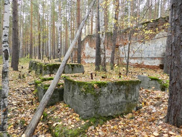 Бетонные блоки в развалинах динамитного завода