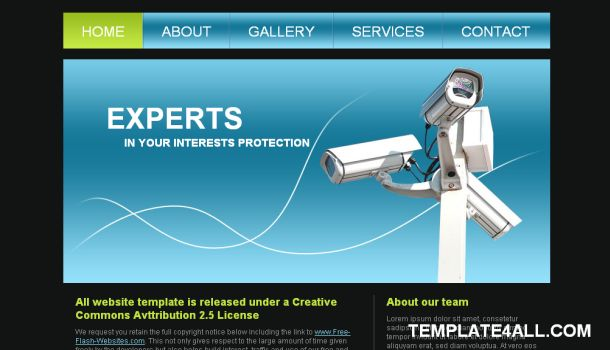 Security Firm Blue Free Website Template