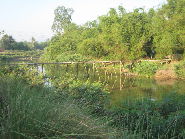 Hình ảnh làng quê Thủy Triều, Phổ Văn, Đức Phổ 2