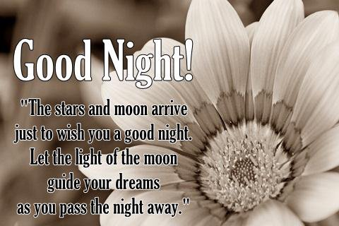 Black and White Good Night Flower Images with Quotes