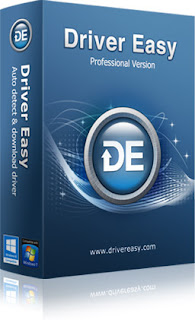 Descargar Driver Easy Professional 5.1.3.15871 + Portable