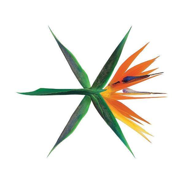 Download [Lyrics] EXO – Walk On Memories (기억을 걷는 밤)