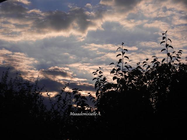 Lever de soleil - Centre - Cher