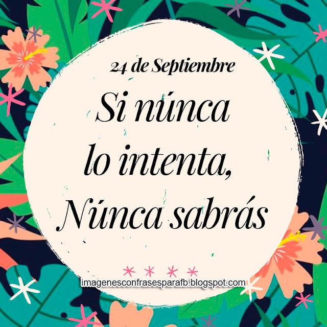 Frase del Día 24 de Septiembre