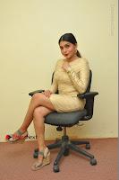 Actress Pooja Roshan Stills in Golden Short Dress at Box Movie Audio Launch  0035.JPG