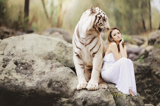 Hot Girl and Tiger by picstore