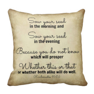 Sow your seed in the morning and sow your seed in the evening because you do not know which will prosper whether this or that or whether both alike will do well (Ecclesiastes 11:6) throw pillow