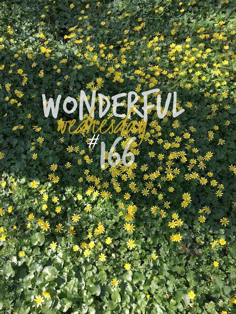 Wonderful Wednesday #166
