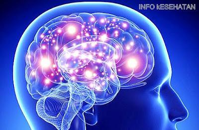 11 Tips Ampuh Mempertajam Daya Ingat Otak