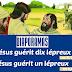 Diaporamas, BD et visuels : Jésus guérit 10 lépreux