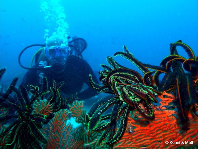 Scuba diver, Pulau Weh, Sabang, Indonesia