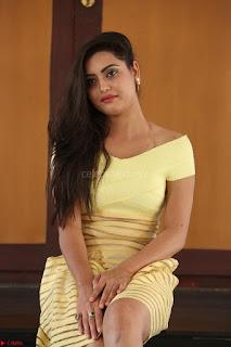 Shipra gaur in V Neck short Yellow Dress ~  002.JPG