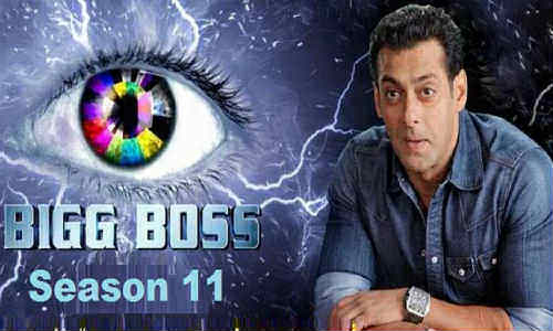 Bigg Boss S11E43 HDTV 480p 250MB 12 November 2017 Watch Online Free Download bolly4u