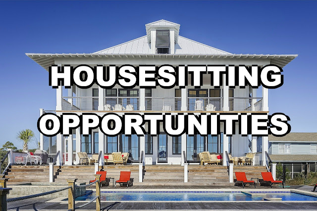 Long term Housesitting Opportunities
